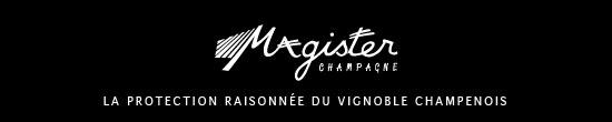Réseau Magister de Champagne